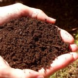 Seed Growing Soil with added Calcium 1KG - FREE POST